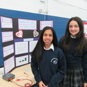 Science Fair 2018 photo album thumbnail 19